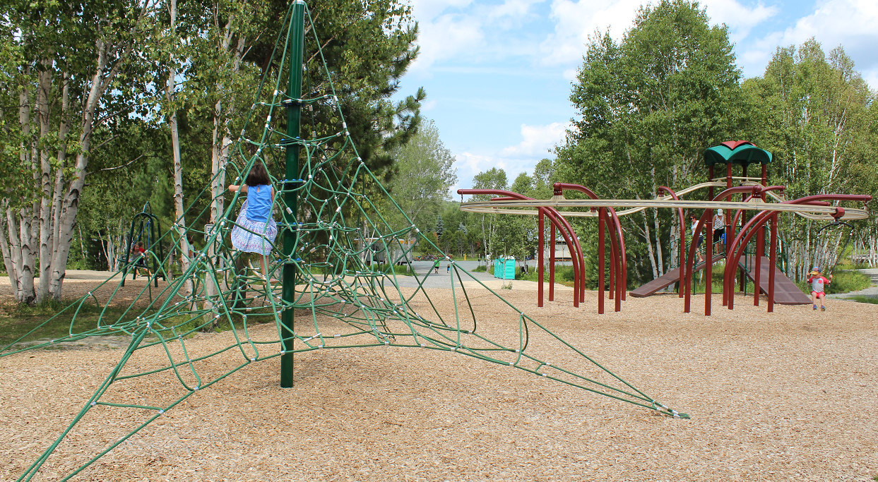 Website_SouthEnd_KiviParkPlayground2
