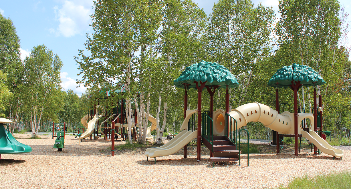 Website_SouthEnd_KiviParkPlayground3